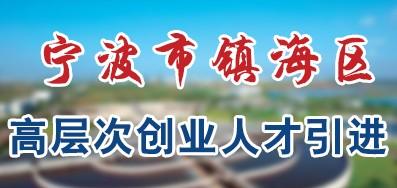 宁波市镇海区