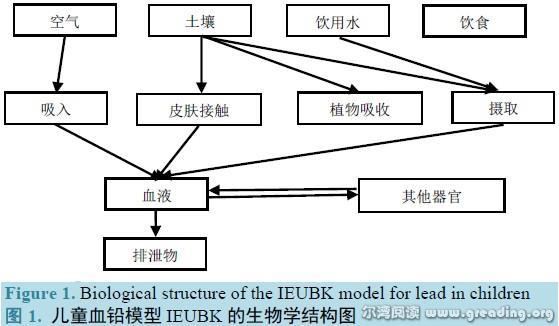 生物学结构图(儿童血铅)